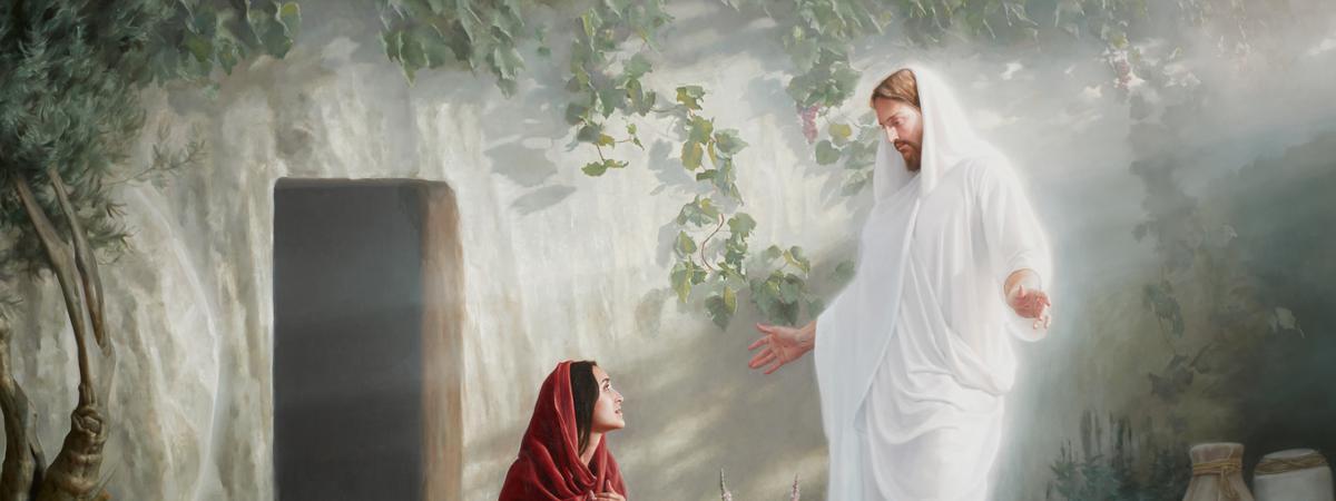 Հատուկ հրավեր հունվարի 16-ի համար